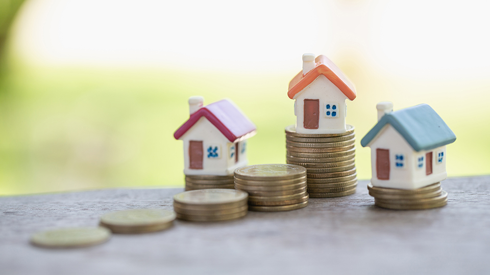 Land tax and stamp duty: A guide for beginners